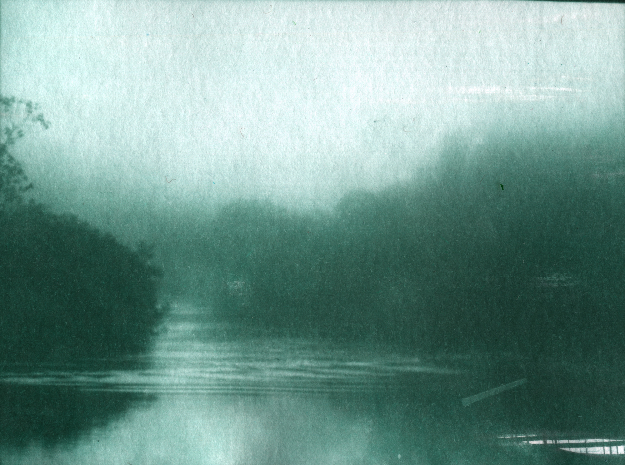 amazone-brouillard